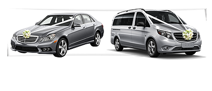 Contact Us Taxi Icon Metallic